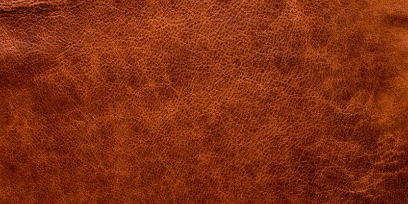 Example aniline leather